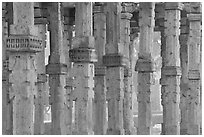 Colons, Qutb complex. New Delhi, India ( black and white)