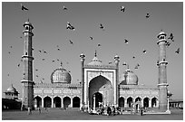 Jama Masjid with pigeons flying. New Delhi, India (black and white)