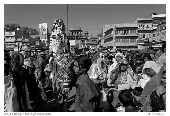 Wedding procession with flower-covered groom on horse. Jodhpur, Rajasthan, India (black and white)