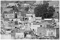 Old quarter houses at dawn. Jodhpur, Rajasthan, India (black and white)