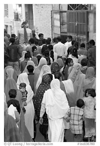 Women following groom during wedding. Jodhpur, Rajasthan, India (black and white)