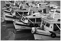 Tour boats. Mumbai, Maharashtra, India ( black and white)