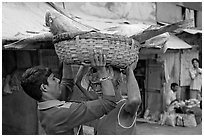 Men unloading basket with huge fish from head, Colaba Market. Mumbai, Maharashtra, India (black and white)