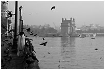 Woman feeding birds, with Gateway of India in background, early morning. Mumbai, Maharashtra, India ( black and white)