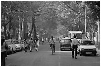 Tree-lined street, Colaba. Mumbai, Maharashtra, India ( black and white)