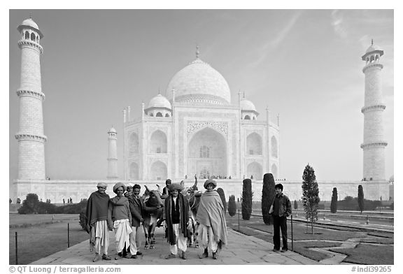 Men with turbans and cows in front of Taj Mahal, early morning. Agra, Uttar Pradesh, India (black and white)