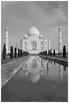 Taj Mahal reflected in basin, morning. Agra, Uttar Pradesh, India (black and white)