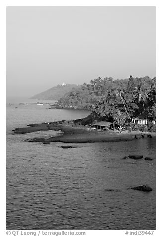 Coastline with palm trees, Dona Paula. Goa, India (black and white)