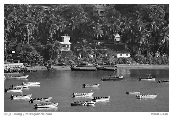 Boats, and palm-tree covered hillside, Dona Paula. Goa, India (black and white)