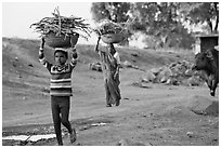 Villagers gathering wood. Khajuraho, Madhya Pradesh, India ( black and white)