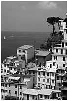 Houses built on the sides of a steep ravine overlook the Mediterranean, Riomaggiore. Cinque Terre, Liguria, Italy (black and white)