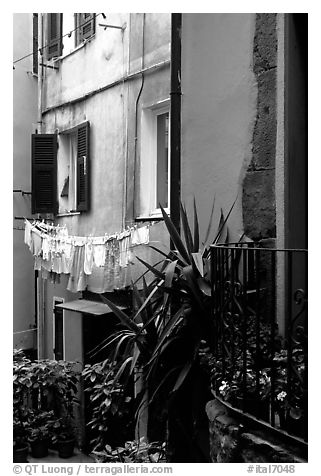 Courtyard, Vernazza. Cinque Terre, Liguria, Italy (black and white)