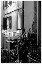 Courtyard, Vernazza. Cinque Terre, Liguria, Italy ( black and white)