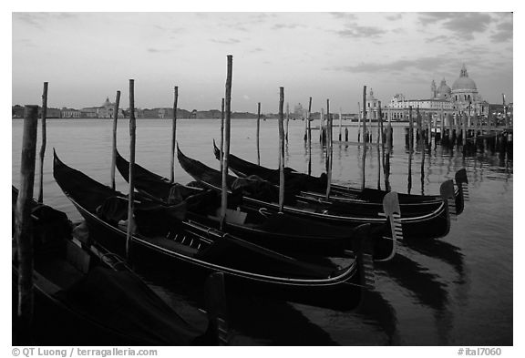 Gondolas, Canale della Guidecca, Santa Maria della Salute church at dawn. Venice, Veneto, Italy (black and white)