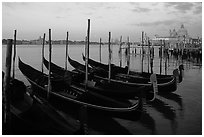 Gondolas, Canale della Guidecca, Santa Maria della Salute church at dawn. Venice, Veneto, Italy ( black and white)
