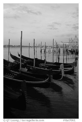 Parked gondolas, Canale della Guidecca, Santa Maria della Salute church at dawn. Venice, Veneto, Italy (black and white)