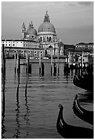 Moored gondolas, Canale della Guidecca, Santa Maria della Salute church at sunrise. Venice, Veneto, Italy ( black and white)