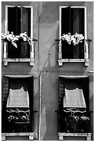 Windows, shutters, and flowers. Venice, Veneto, Italy (black and white)