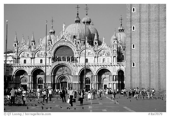 Black and white picture photo basilica san marco late afternoon venice veneto italy