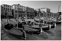 Row of gondolas covered with blue tarps, the Grand Canal. Venice, Veneto, Italy ( black and white)