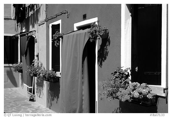 Multicolored houses and flowers,  Burano. Venice, Veneto, Italy (black and white)