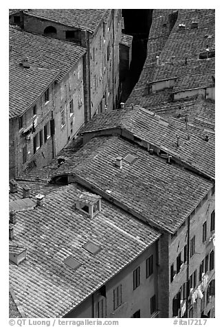 Rooftops seen from Torre del Mangia. Siena, Tuscany, Italy (black and white)
