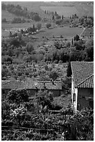 Gardens and contryside  on the periphery of the town. San Gimignano, Tuscany, Italy ( black and white)
