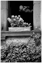 Window with flowers. Orvieto, Umbria ( black and white)