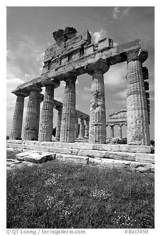 Ruins of Greek Temple of Ceres. Campania, Italy (black and white)