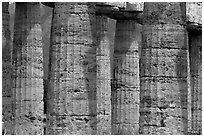 Doric columns of Tempio di Nettuno. Campania, Italy (black and white)
