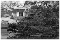 Buyongji, pond, trees, and canvas, Changdeok Palace. Seoul, South Korea (black and white)