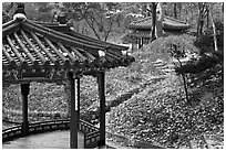 Pavilions in autumn, Changdeok Palace gardens. Seoul, South Korea ( black and white)