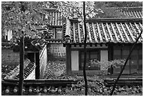 Fall foliage and historic architecture, Yeongyeong-dang, Changdeokgung Palace. Seoul, South Korea (black and white)