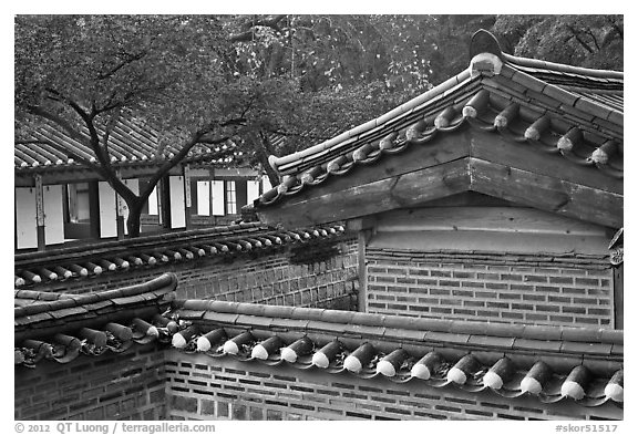 Wall and rooftop details, Yeongyeong-dang, Changdeok Palace. Seoul, South Korea (black and white)