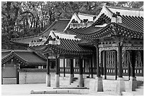 Huijeong-Dang, Changdeok Palace. Seoul, South Korea ( black and white)