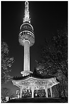N Seoul Tower at night. Seoul, South Korea (black and white)