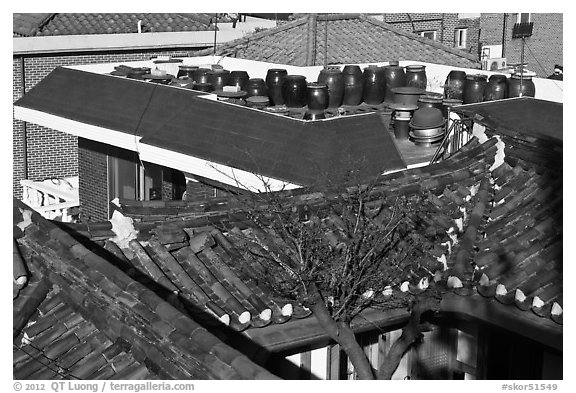 Tile rooftops of Hanok houses. Seoul, South Korea (black and white)