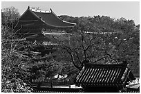 Changdeokgung Palace complex. Seoul, South Korea (black and white)