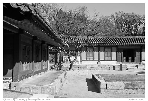 Jeongsa-cheong, Jongmyo shrine. Seoul, South Korea (black and white)