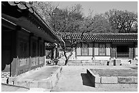 Jeongsa-cheong, Jongmyo shrine. Seoul, South Korea ( black and white)