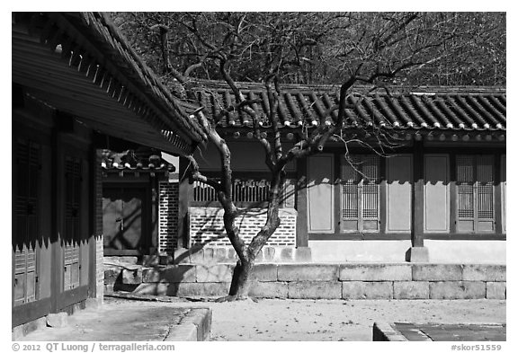 Jeongsa-cheong, Jongmyo royal ancestral shrine. Seoul, South Korea (black and white)