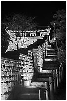 Steep section of wall at night, Namchi, Suwon Hwaseong Fortress. South Korea ( black and white)