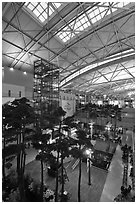 Trees inside Incheon international main terminal. South Korea (black and white)