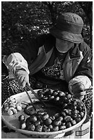 Woman grilling chestnuts. Daegu, South Korea (black and white)