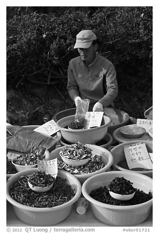 Man selling natural ingredients. South Korea (black and white)