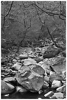 Stream in winter near Haeinsa. South Korea (black and white)