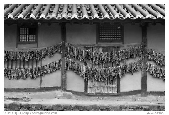 House wall with greens drying. Hahoe Folk Village, South Korea (black and white)