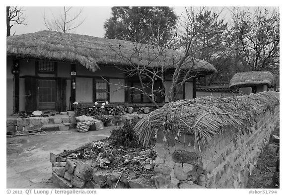 House and fence with straw roofing. Hahoe Folk Village, South Korea (black and white)