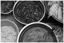 Korean kimchi ingredients. Gyeongju, South Korea ( black and white)
