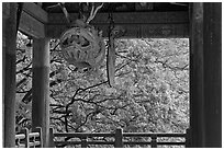 Fish-shaped gong and fall colors, Bulguk-sa. Gyeongju, South Korea ( black and white)